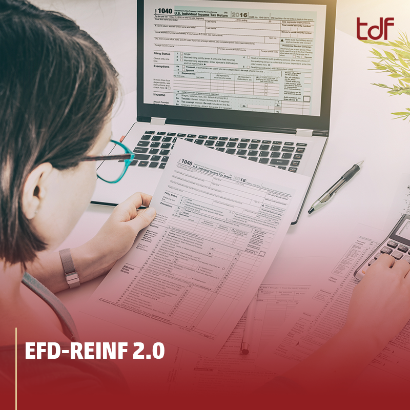 efd-reinf 2.0